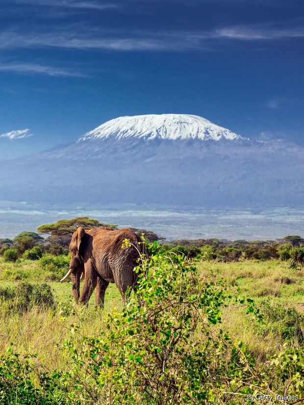 Un petit safari en Tanzanie ?