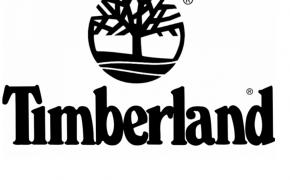 timberland a1iye hommes derbies